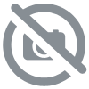 Pin's Ya Abbas rouge